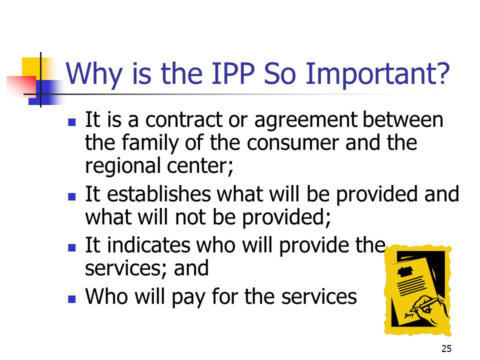 Why is the IPP So Important