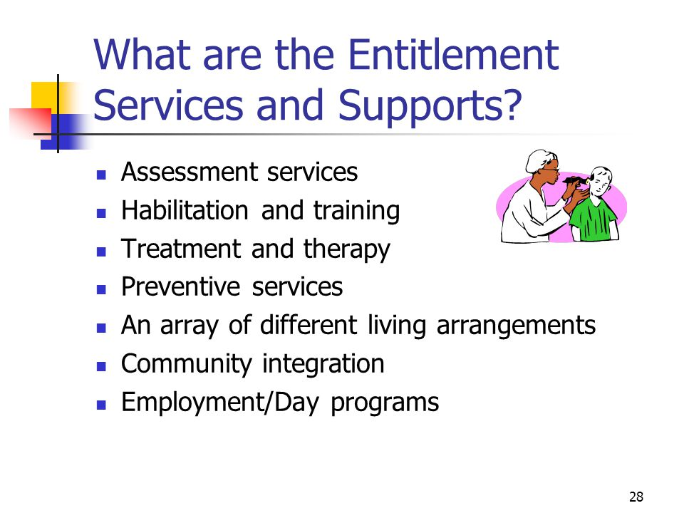 What are the Entitlement Services and Supports