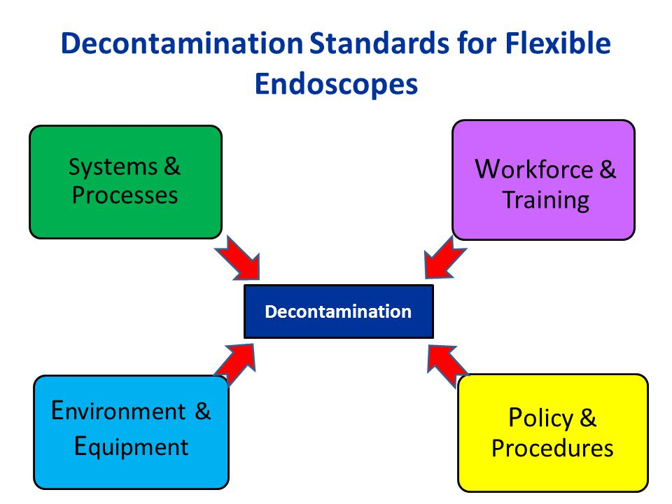 Decontamination Standards for Flexible Endoscopes