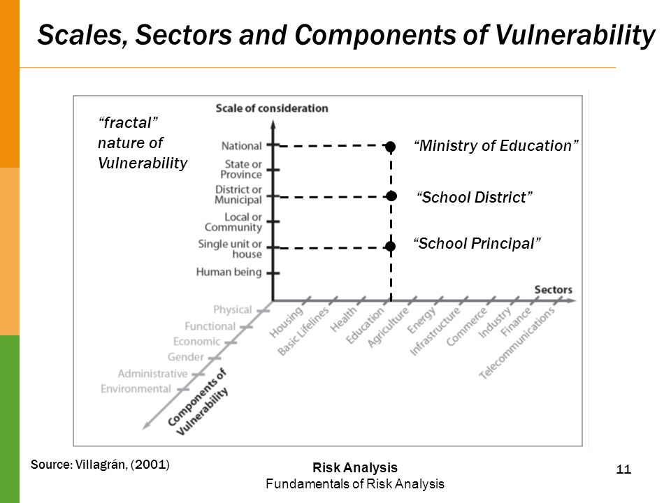 Scales, Sectors and Components of Vulnerability