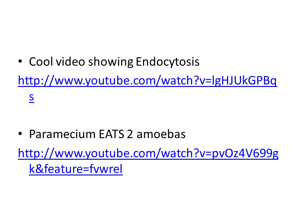 Cool video showing Endocytosis