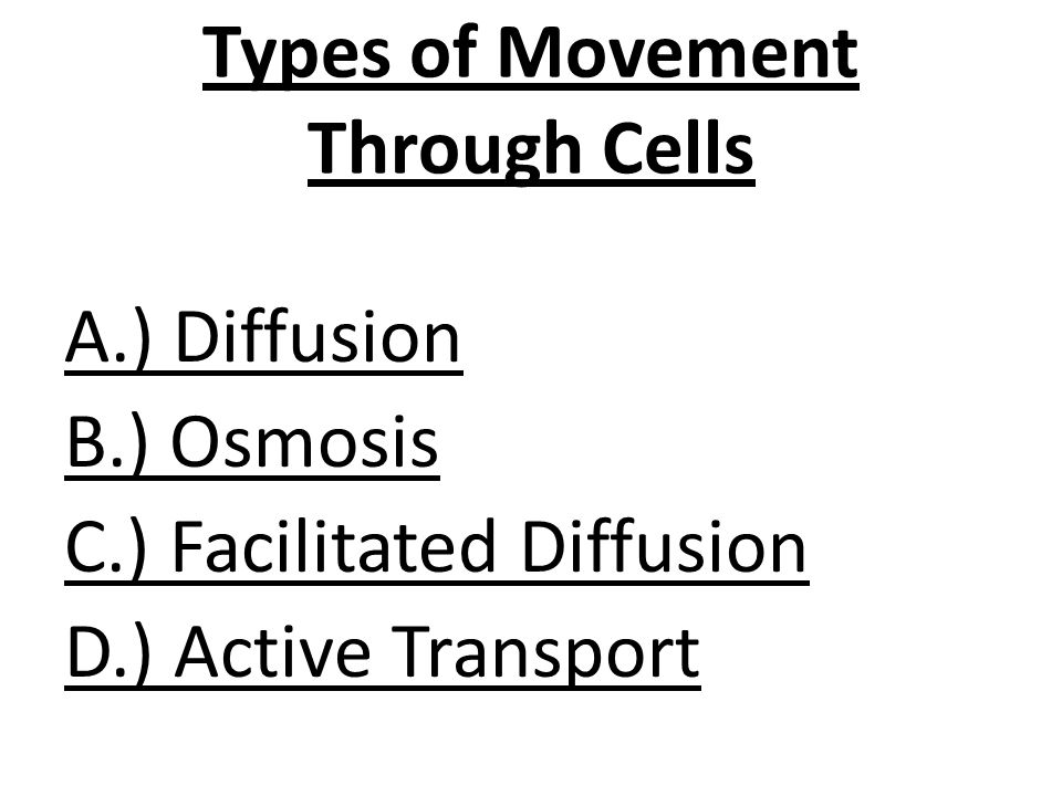 Types of Movement Through Cells