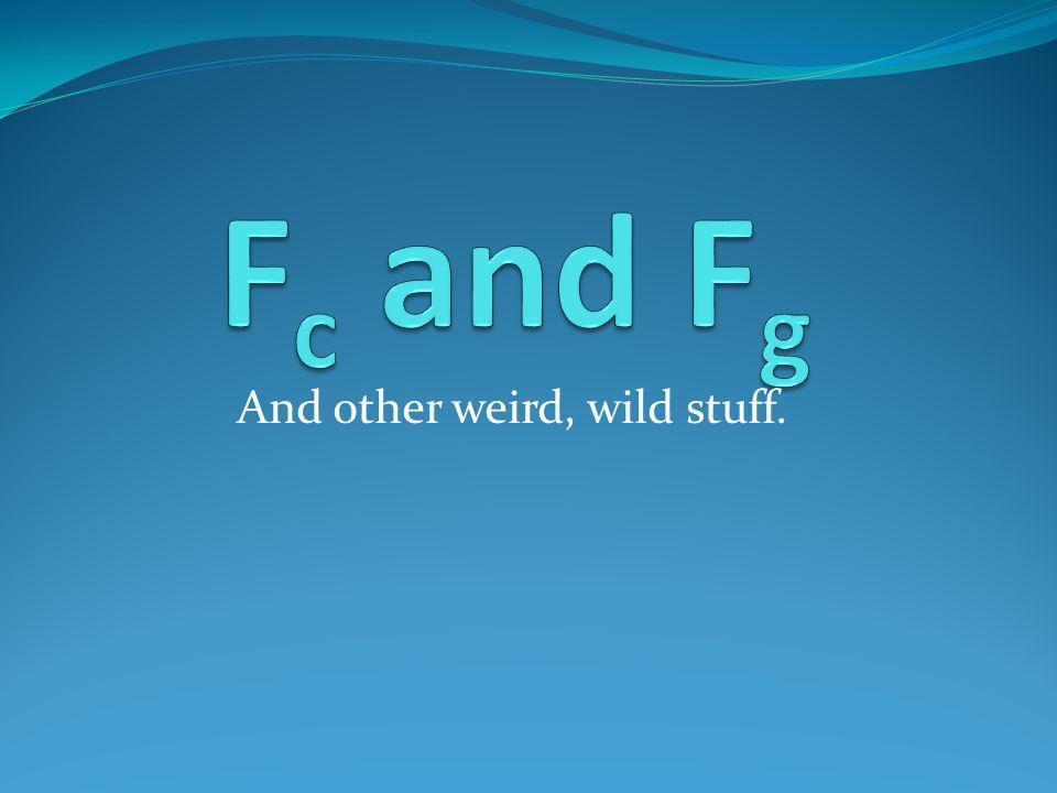 And other weird, wild stuff.