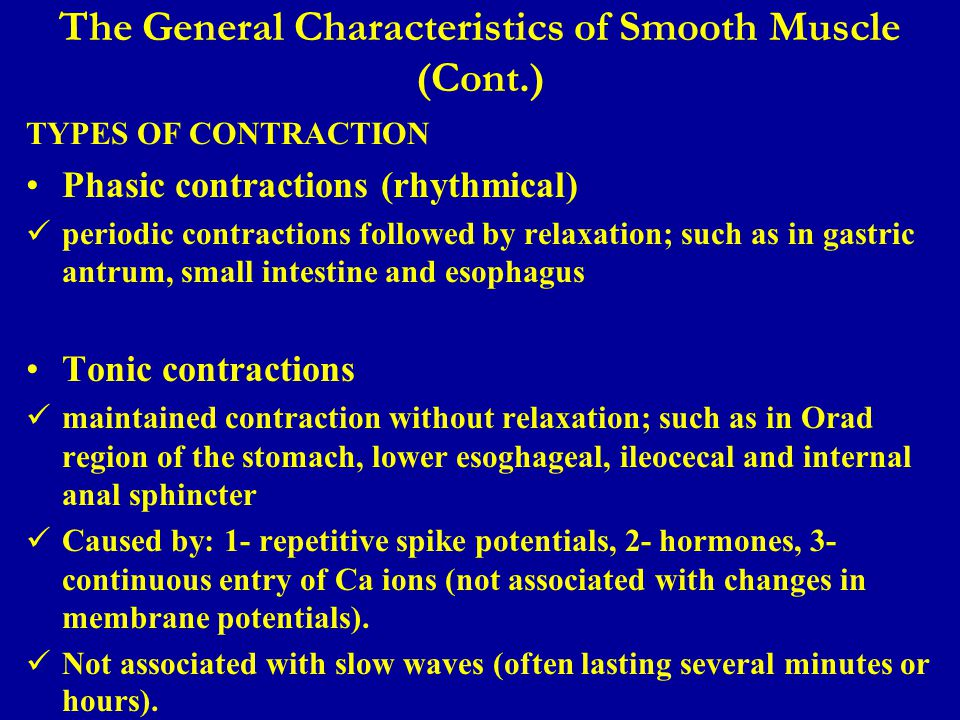 The General Characteristics of Smooth Muscle (Cont.)