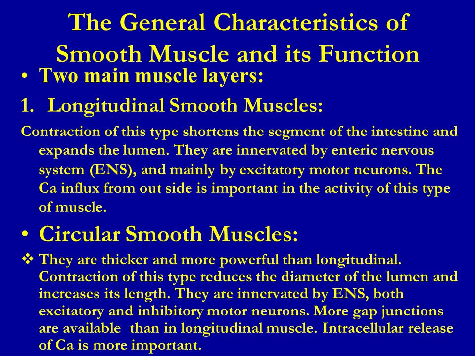 The General Characteristics of Smooth Muscle and its Function