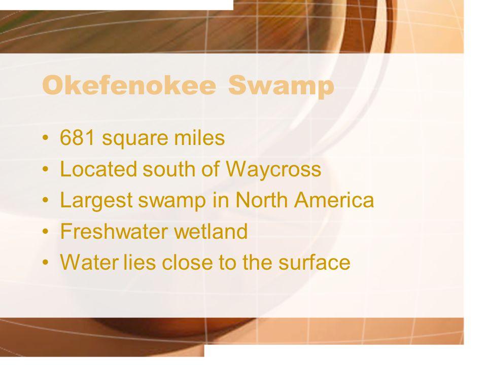 Okefenokee Swamp 681 square miles Located south of Waycross