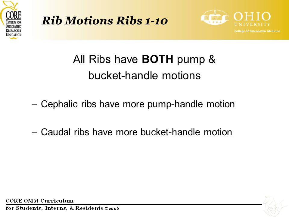 All Ribs have BOTH pump & bucket-handle motions