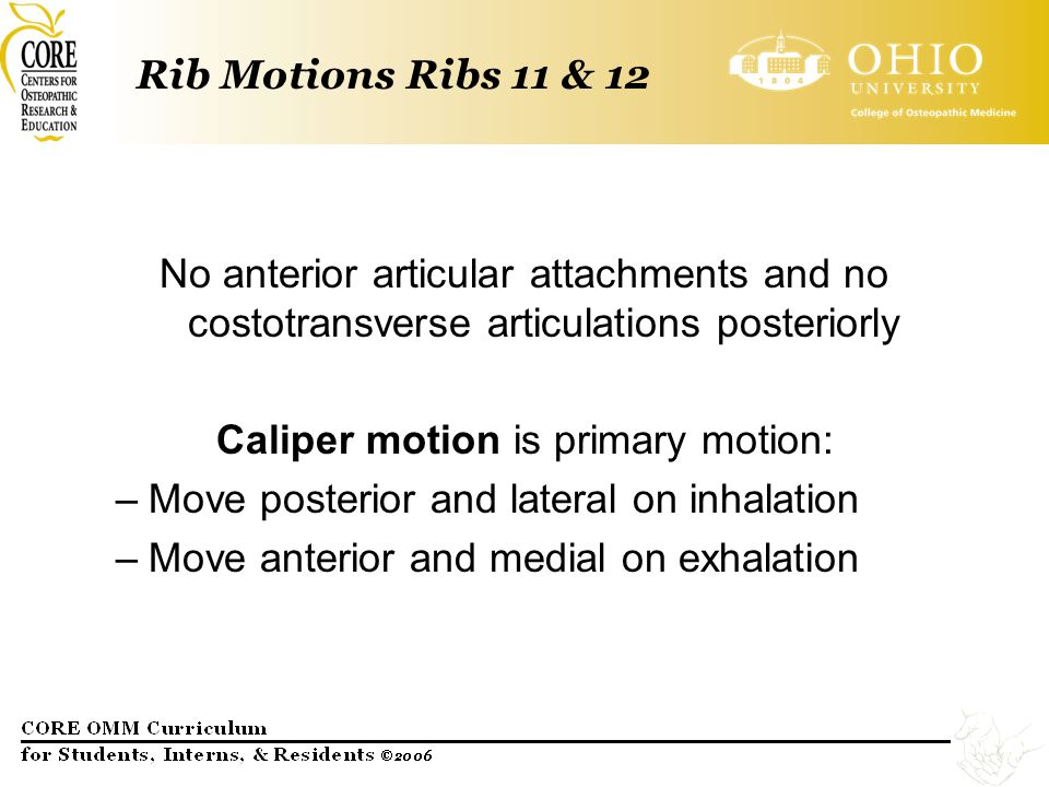 Caliper motion is primary motion: