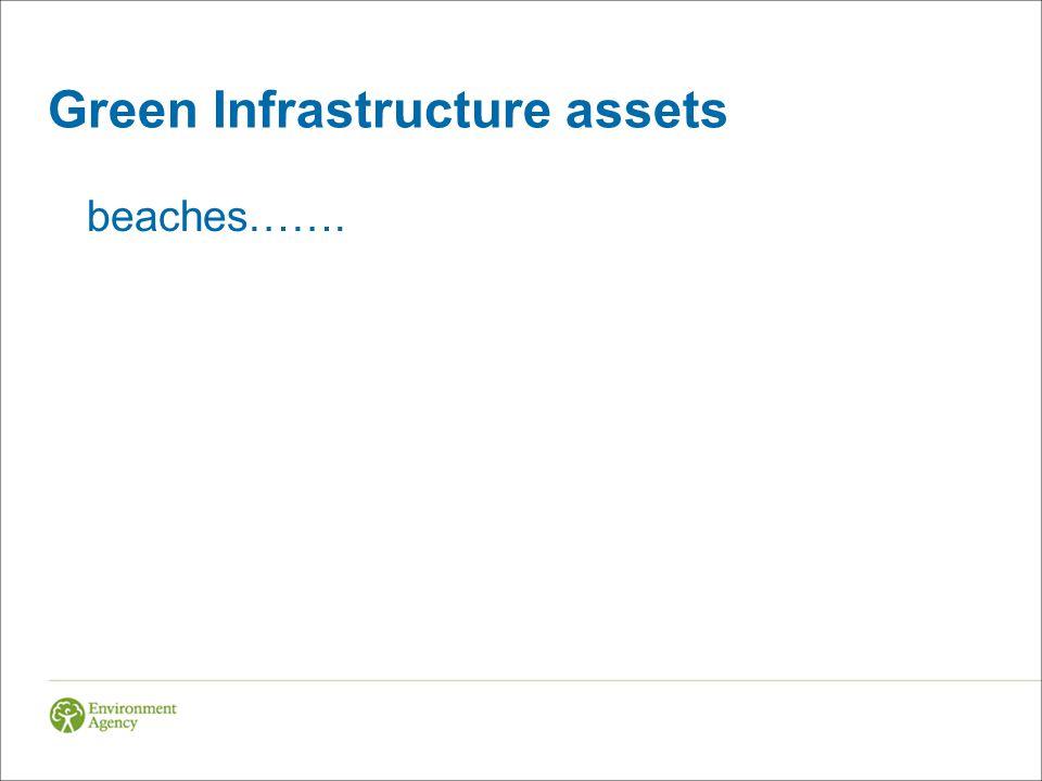 Green Infrastructure assets