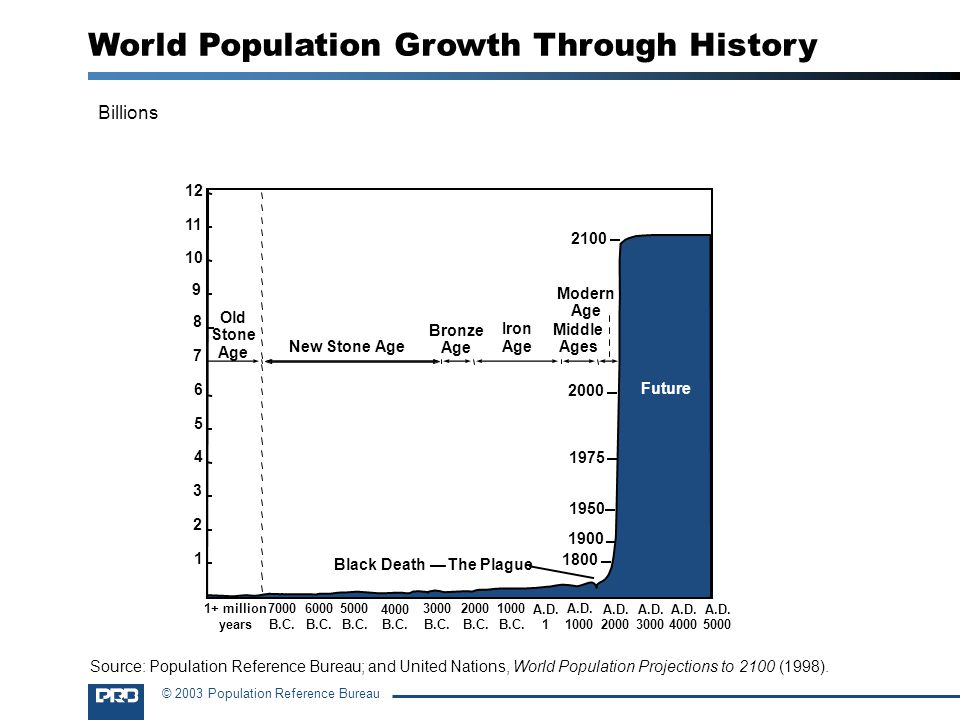 World Population Growth Through History