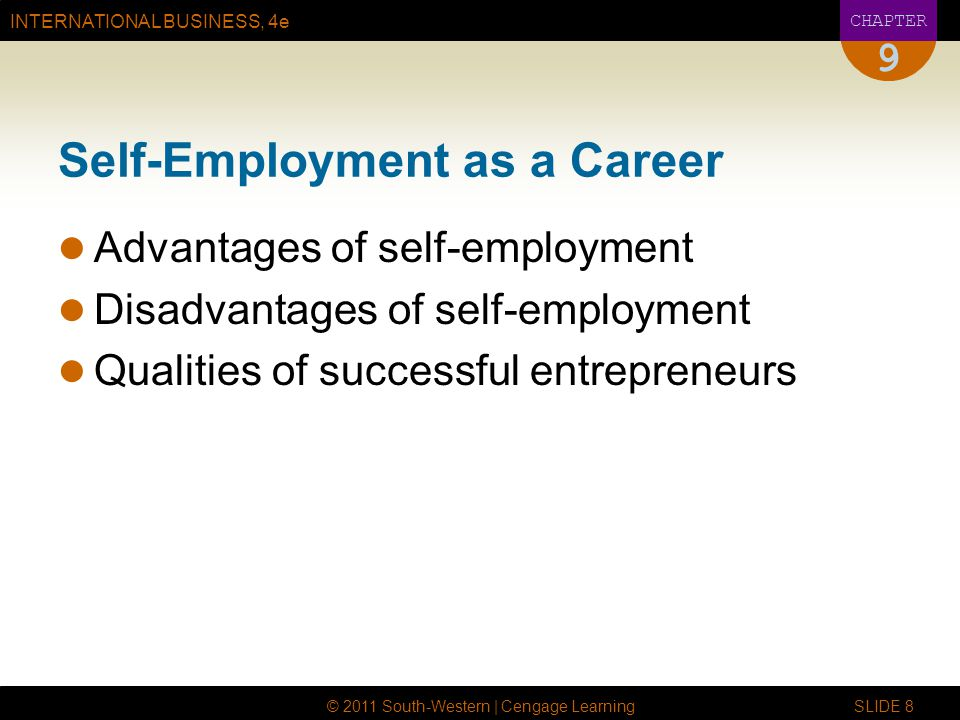 Self-Employment as a Career