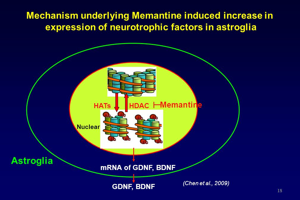 Mechanism underlying Memantine induced increase in