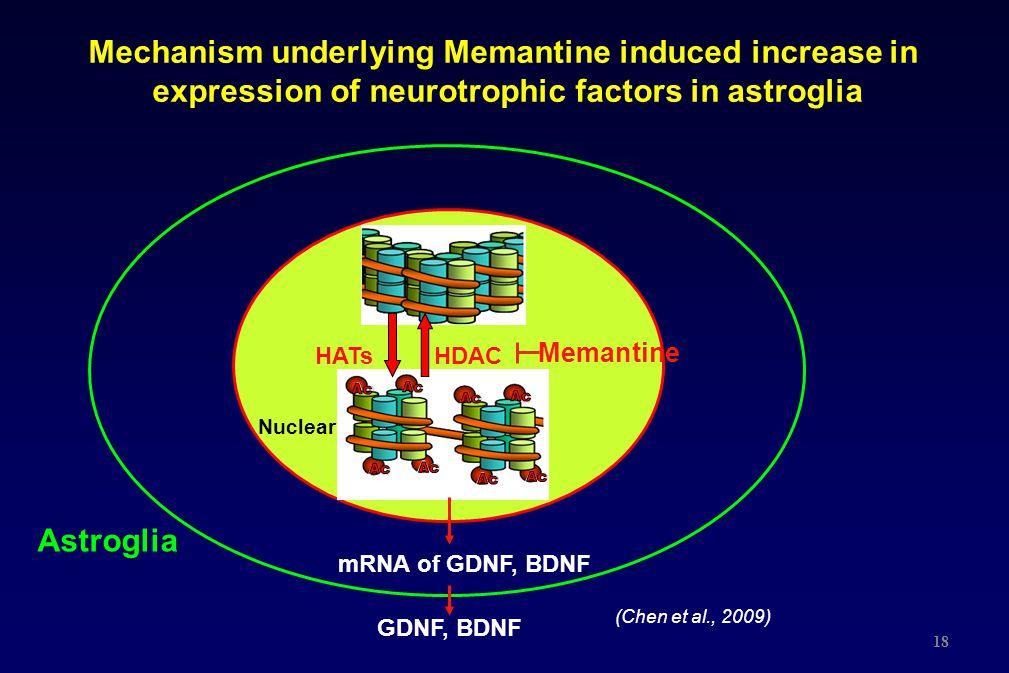 Mechanism underlying Memantine induced increase in