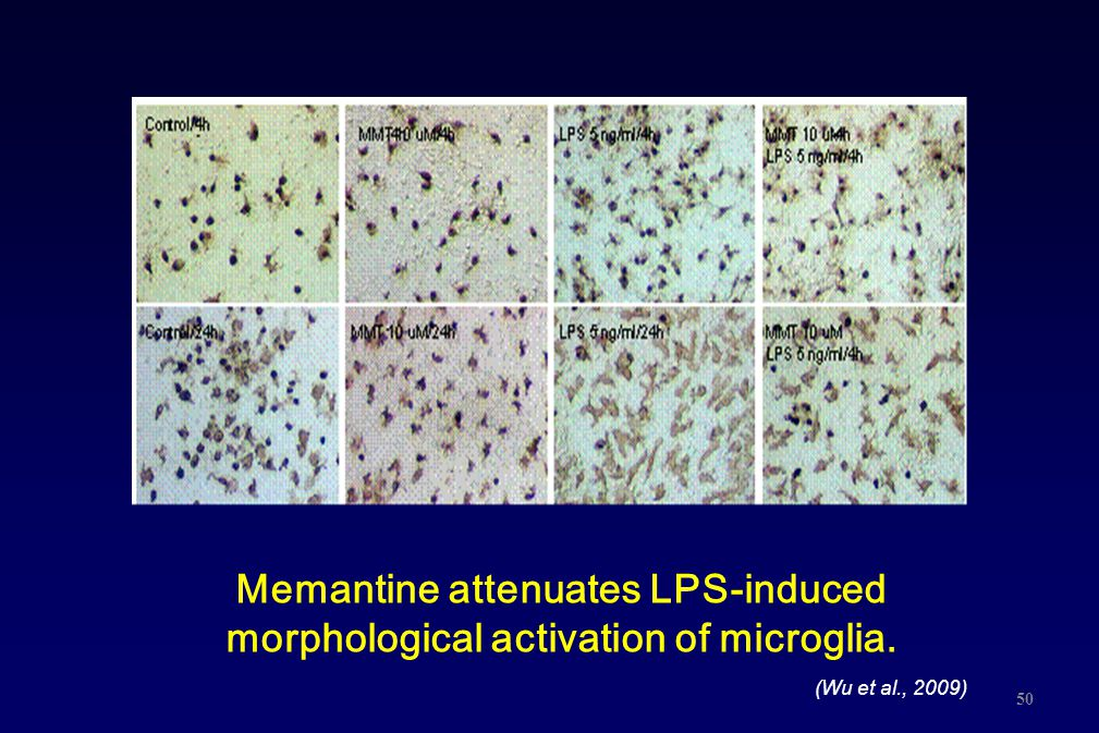 Memantine attenuates LPS-induced morphological activation of microglia.
