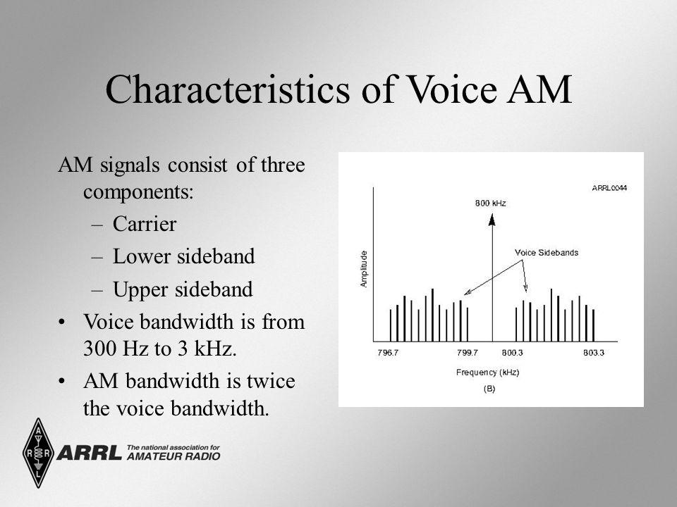 Characteristics of Voice AM