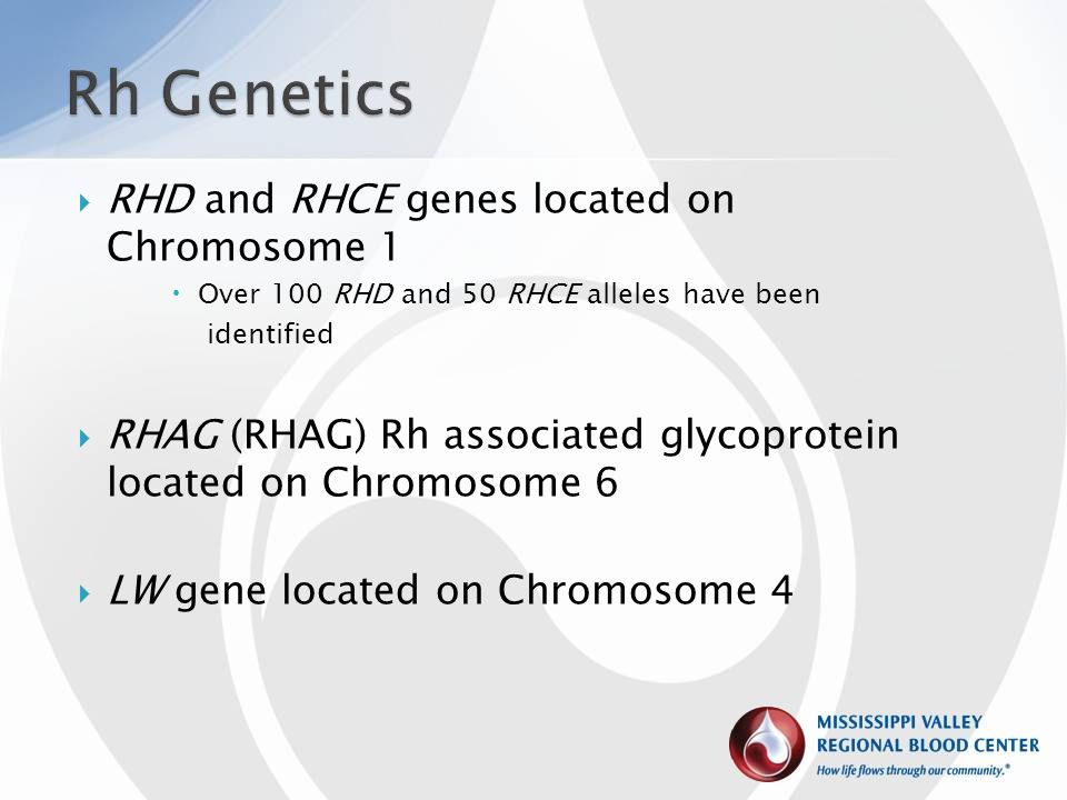 Rh Genetics RHD and RHCE genes located on Chromosome 1