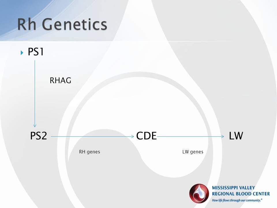 Rh Genetics PS1. RHAG. PS2 CDE LW.