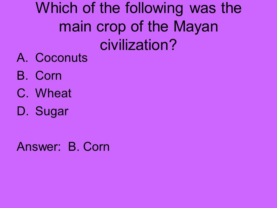 Which of the following was the main crop of the Mayan civilization
