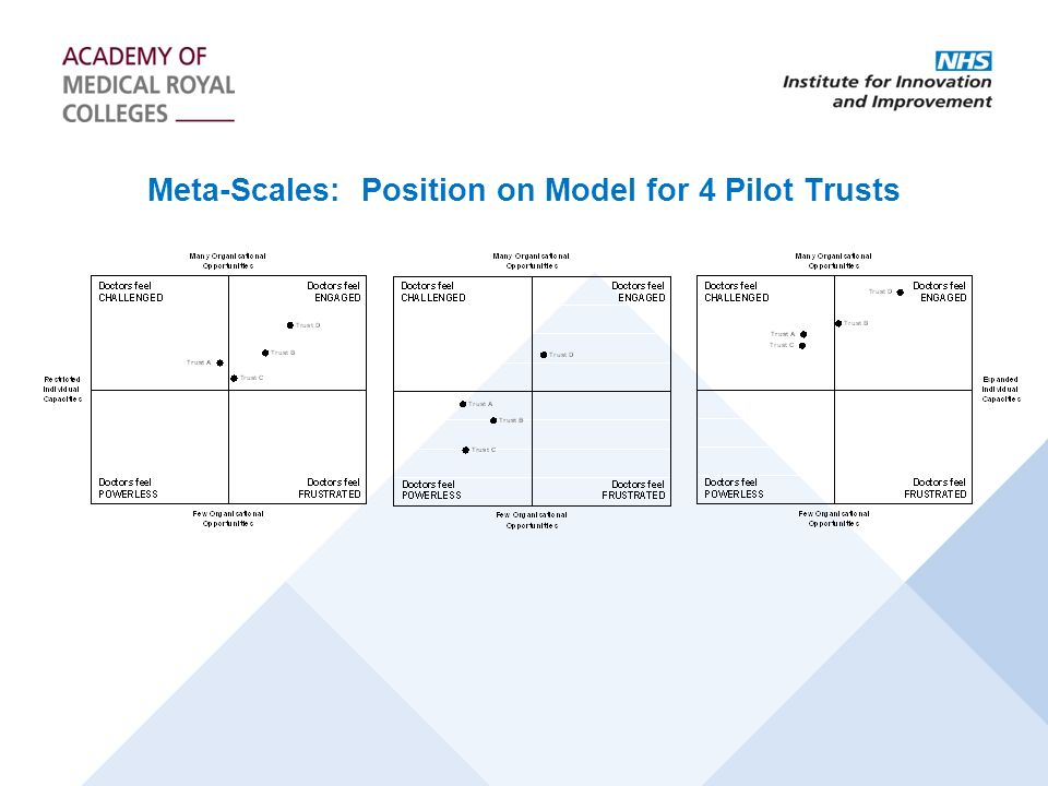 Meta-Scales: Position on Model for 4 Pilot Trusts