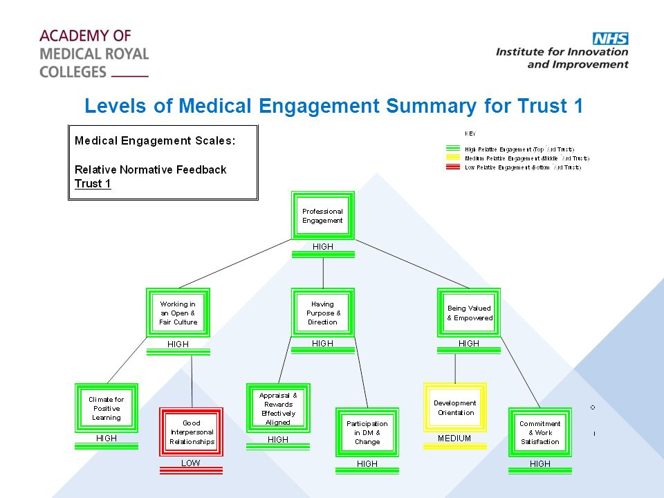 Levels of Medical Engagement Summary for Trust 1