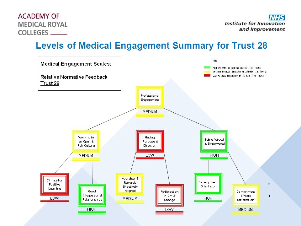 Levels of Medical Engagement Summary for Trust 28