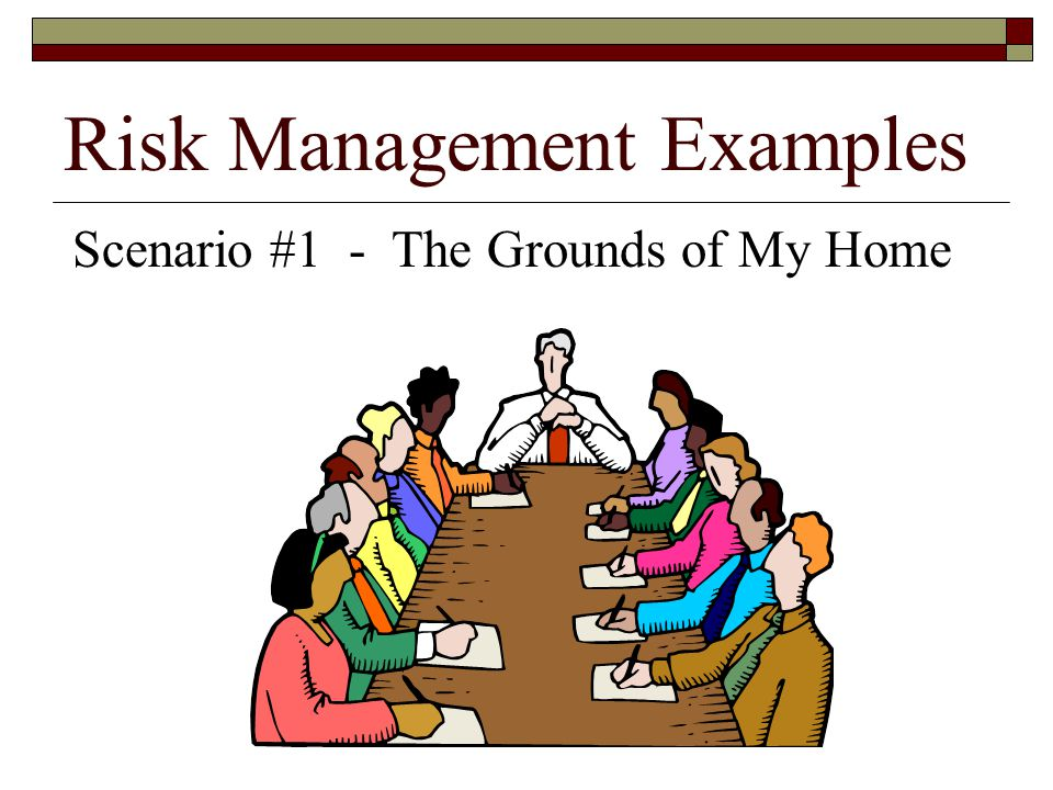 Risk Management Examples