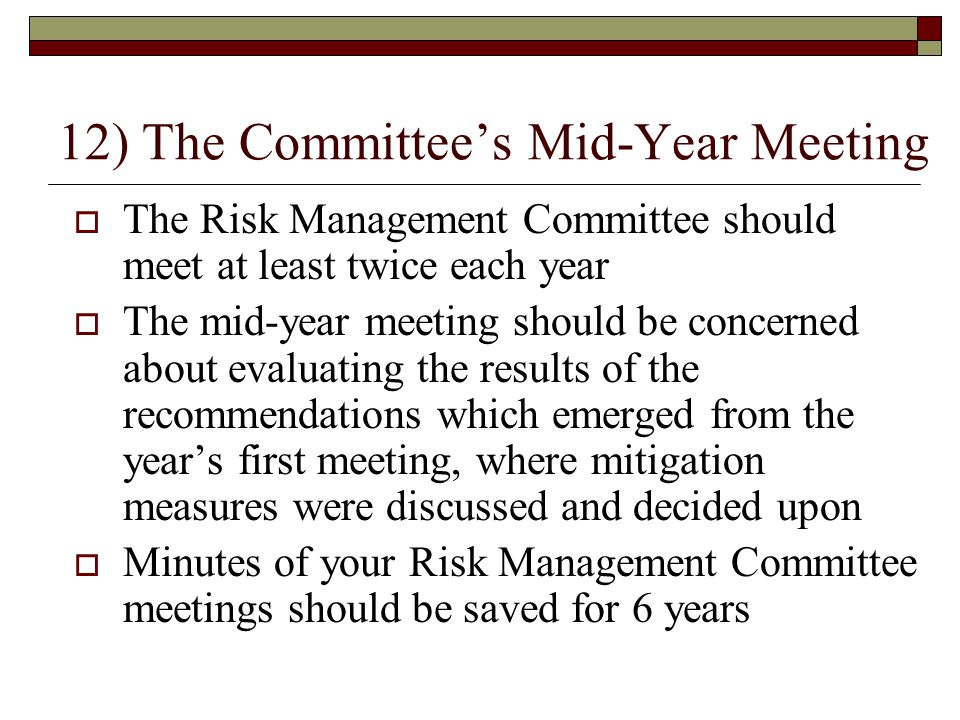 12) The Committee's Mid-Year Meeting