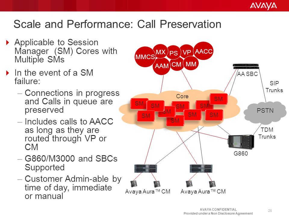 Scale and Performance: Call Preservation