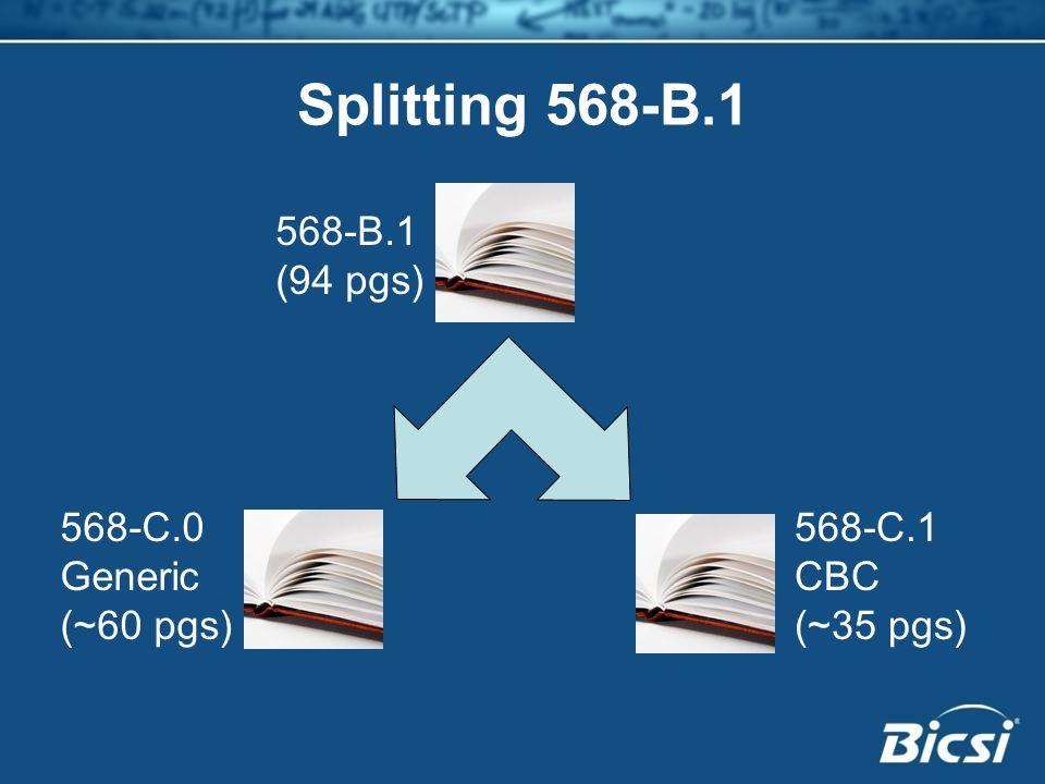Splitting 568-B.1 568-B.1 (94 pgs) 568-C.0 Generic (~60 pgs) 568-C.1