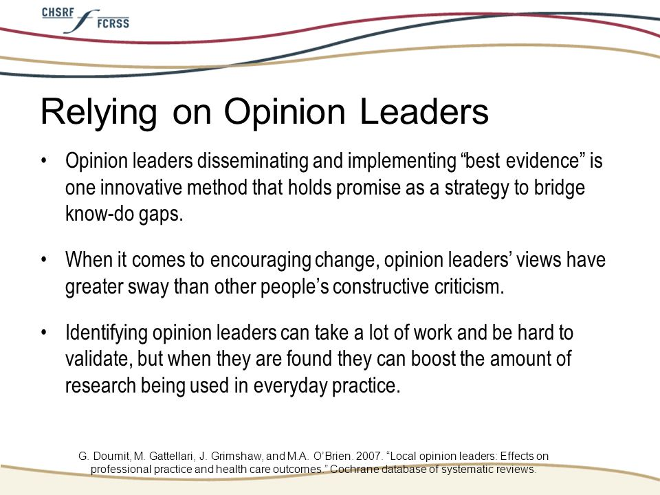 Relying on Opinion Leaders