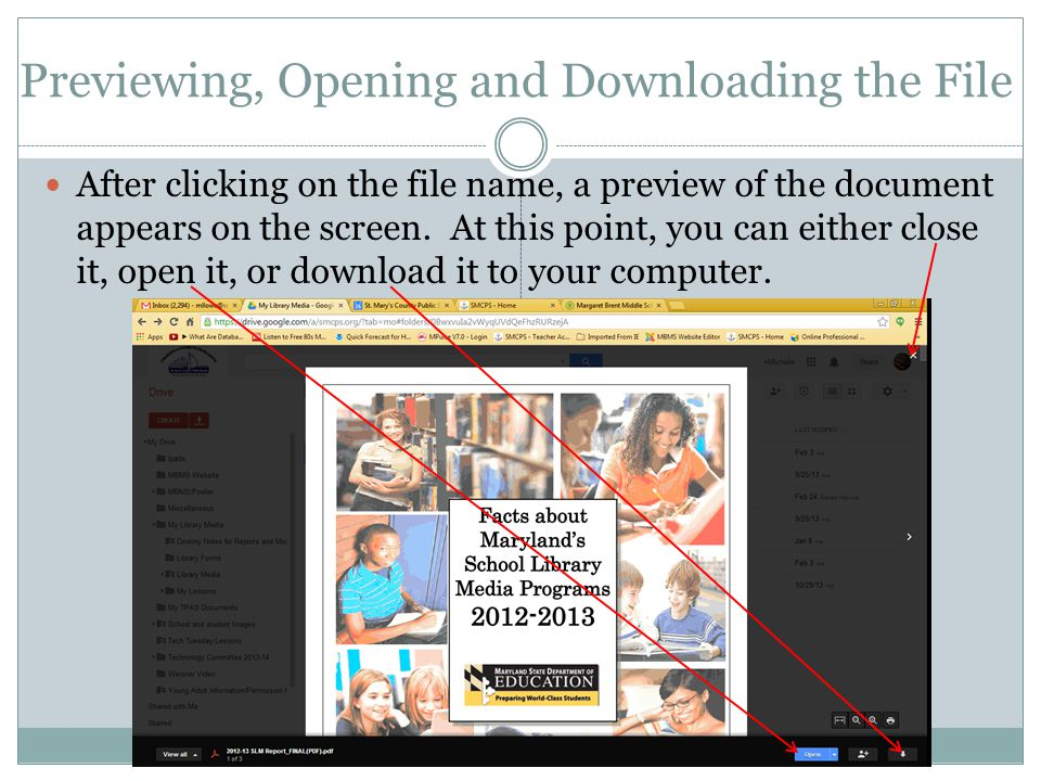 Previewing, Opening and Downloading the File