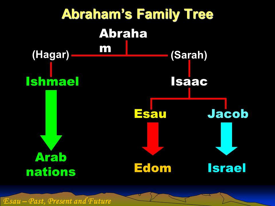 Abraham's Family Tree Abraham Ishmael Isaac Esau Jacob Arab nations