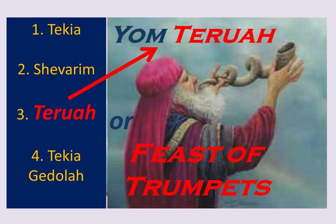 or Feast of Trumpets Yom Teruah 1. Tekia 2. Shevarim 3. Teruah