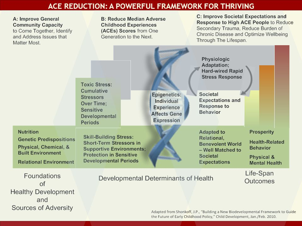 ACE Reduction: a powerful framework for thriving