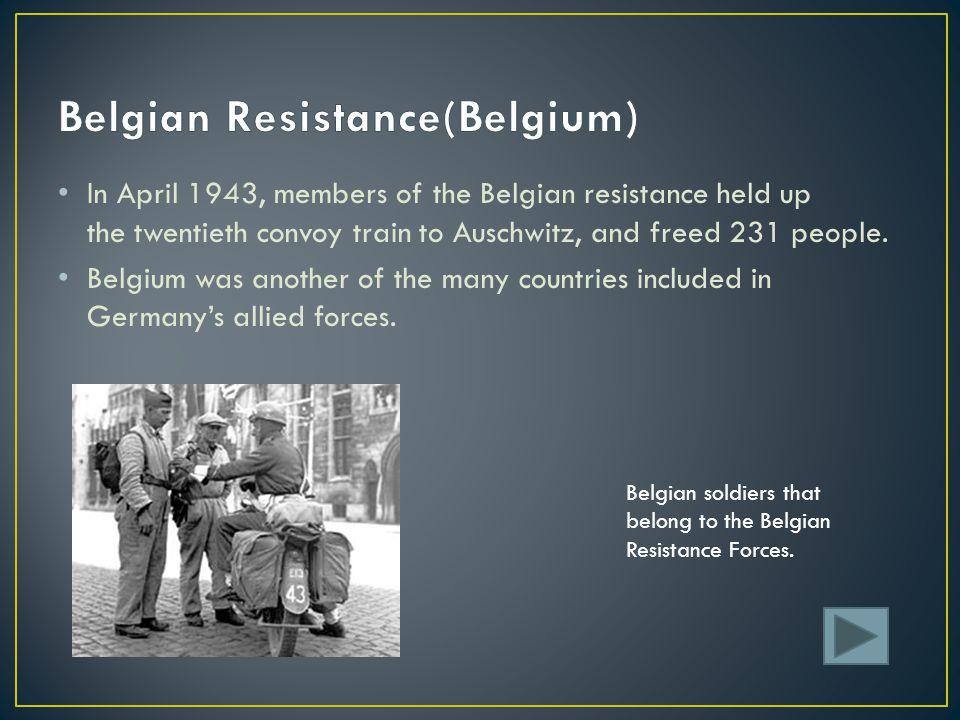 Belgian Resistance(Belgium)