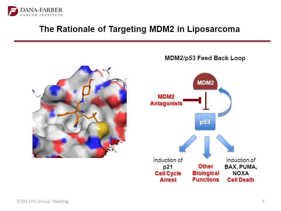 The Rationale of Targeting MDM2 in Liposarcoma