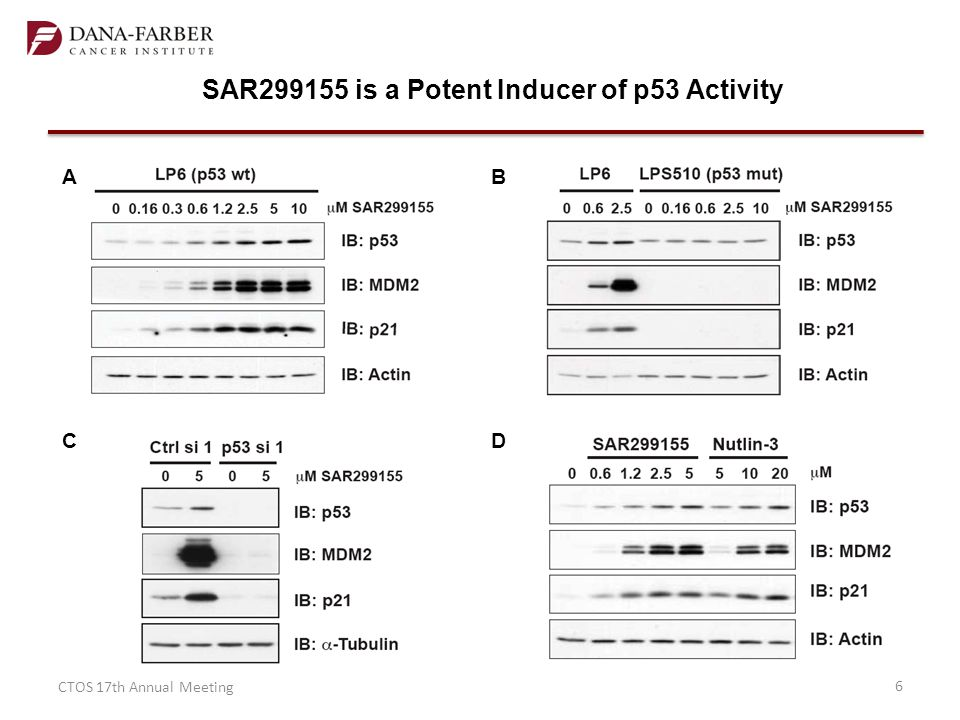 SAR299155 is a Potent Inducer of p53 Activity