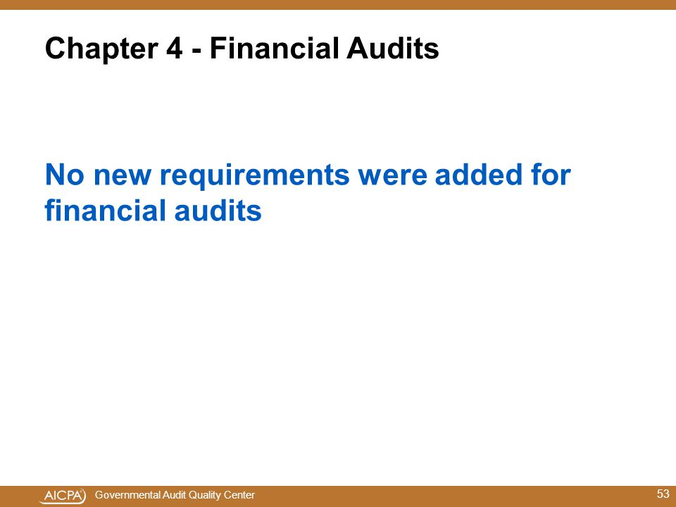 Chapter 4 - Financial Audits