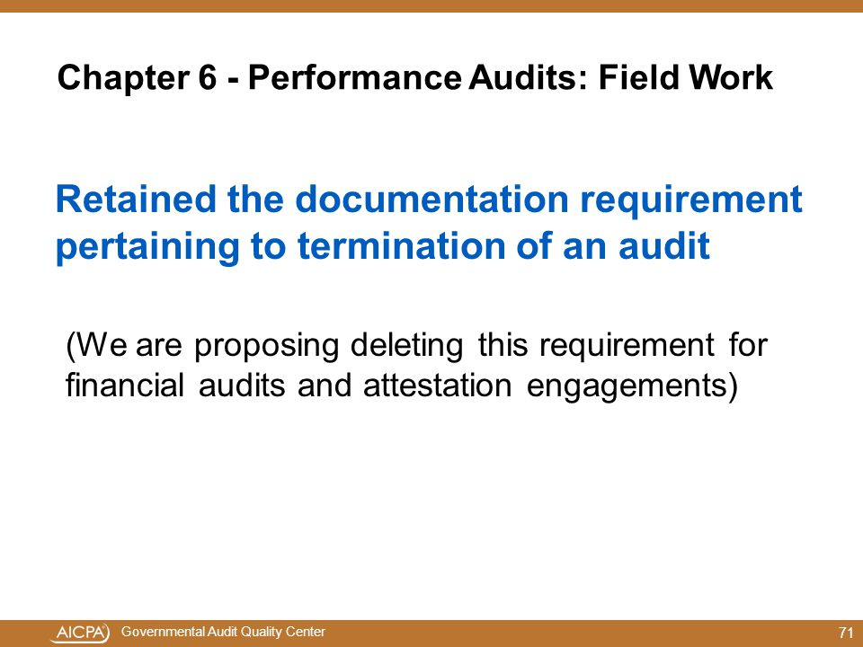 Chapter 6 - Performance Audits: Field Work