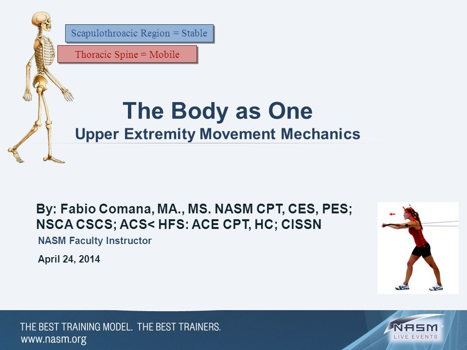 The Body as One Upper Extremity Movement Mechanics