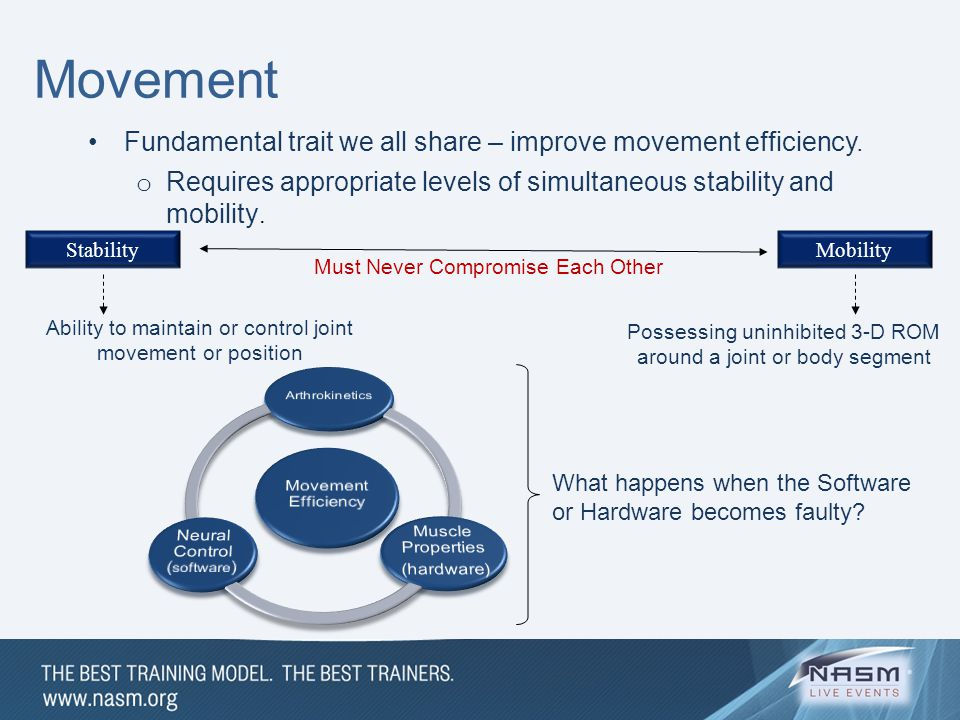 Movement Fundamental trait we all share – improve movement efficiency.