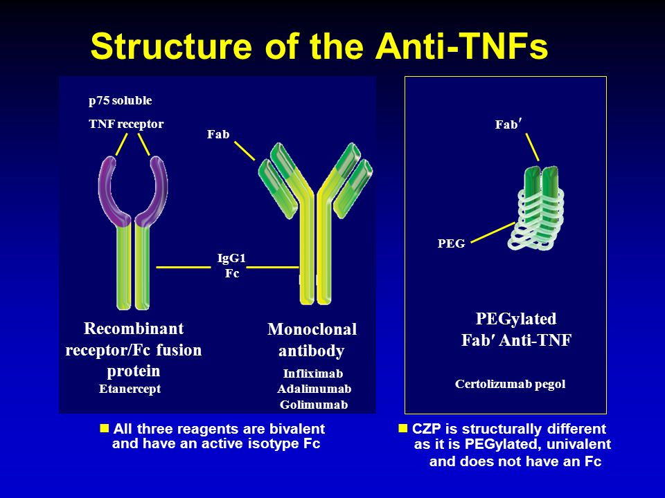 Structure of the Anti-TNFs