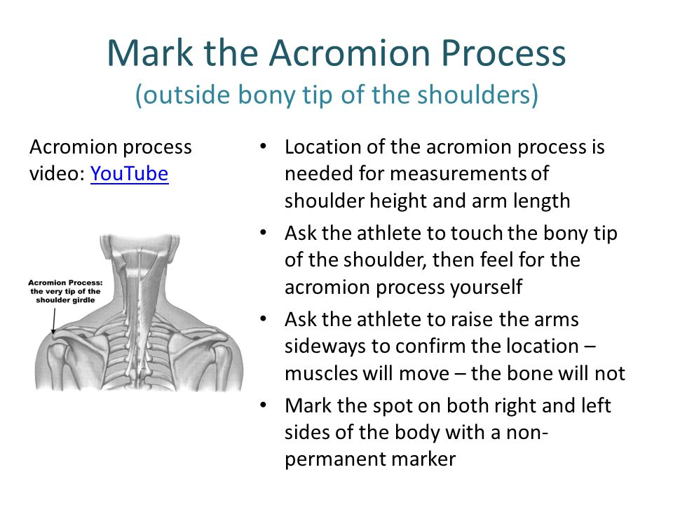 Mark the Acromion Process (outside bony tip of the shoulders)