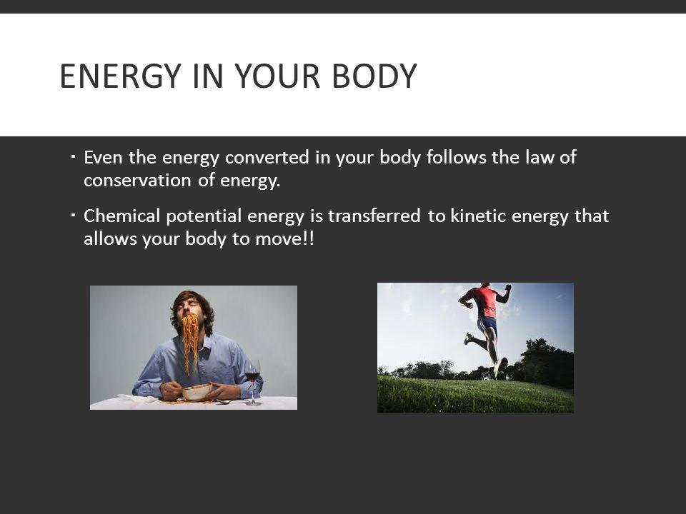 Energy in Your Body Even the energy converted in your body follows the law of conservation of energy.