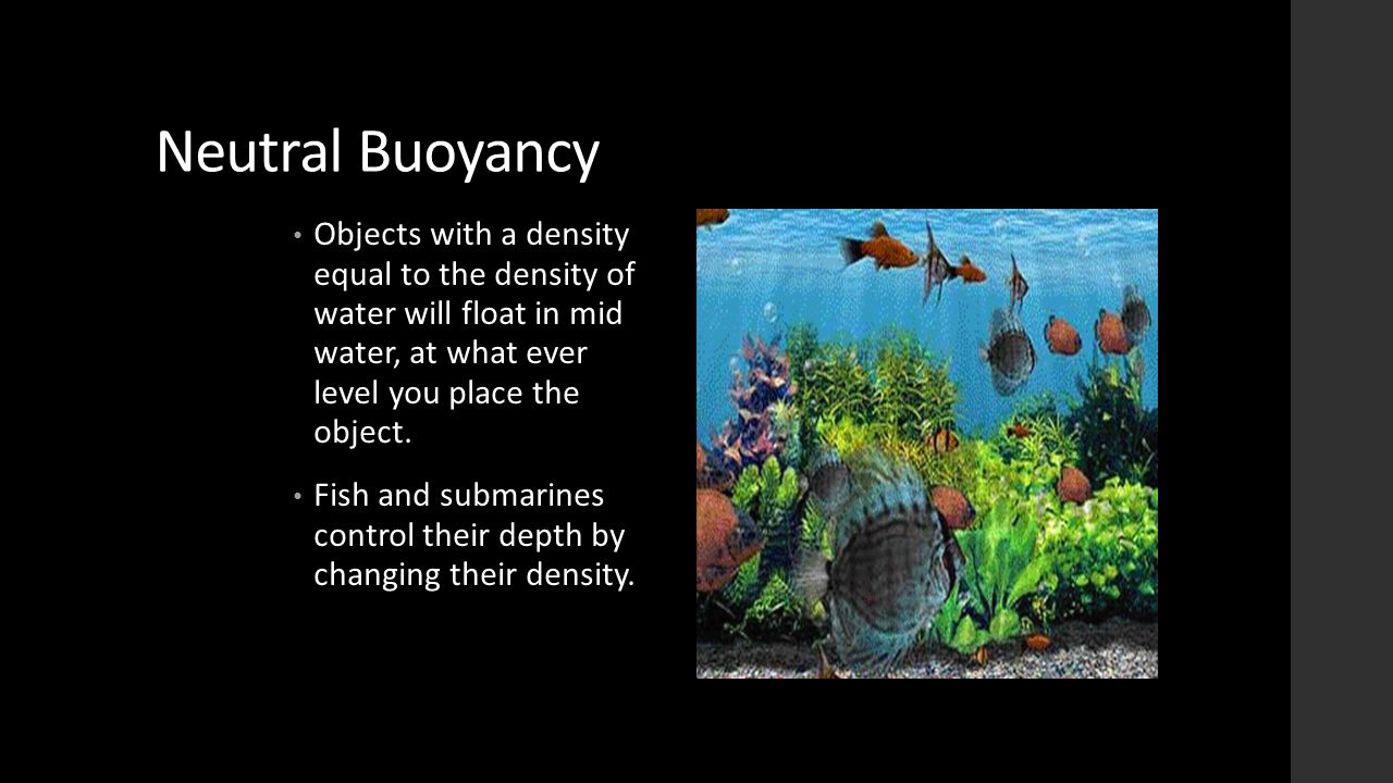 Neutral Buoyancy Objects with a density equal to the density of water will float in mid water, at what ever level you place the object.