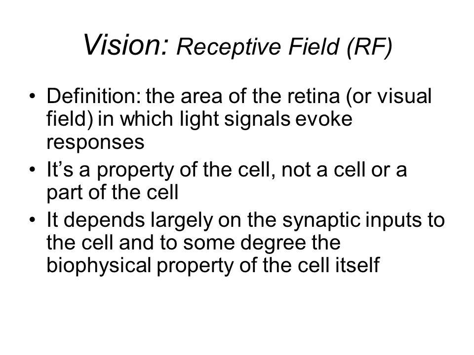Vision: Receptive Field (RF)