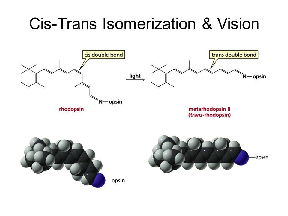 Cis-Trans Isomerization & Vision