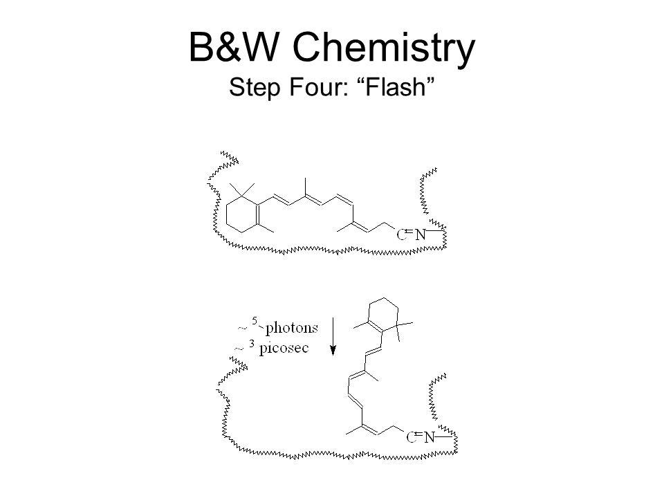 B&W Chemistry Step Four: Flash
