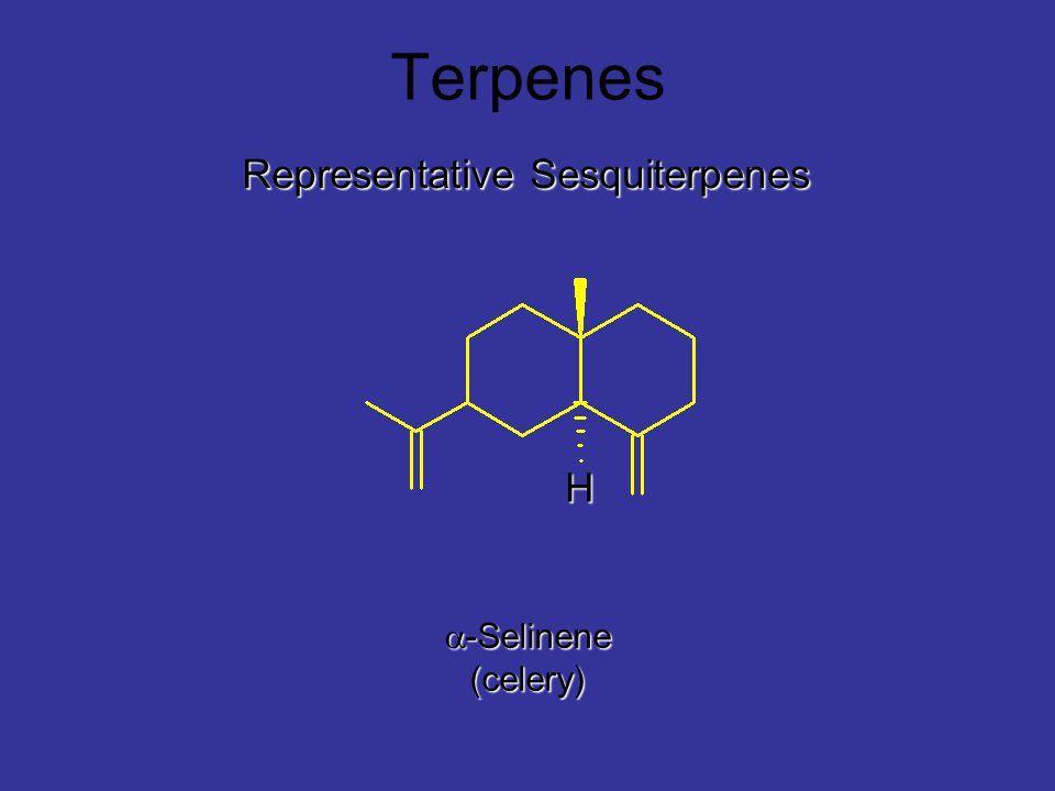 Terpenes Representative Sesquiterpenes H a-Selinene (celery)