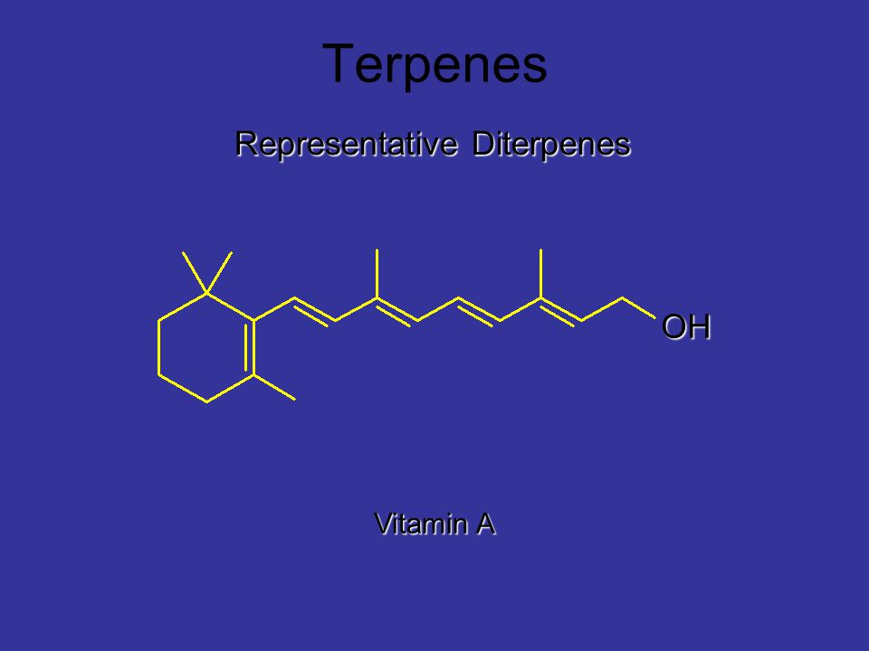 Terpenes Representative Diterpenes OH Vitamin A